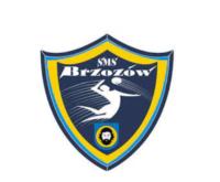 Logo SMS Brzozów